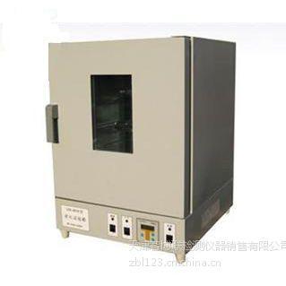 热老化试验箱-天津智博联RLH热老化箱