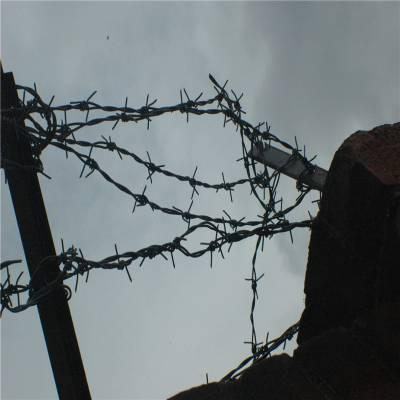 旺来刺绳多少钱一米 刺丝网围栏价格 刺绳代理商