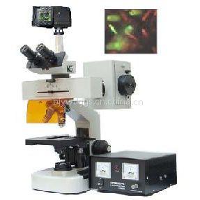正置荧光显微镜价格 DFM-20C