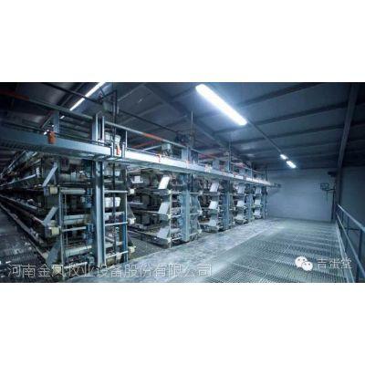 厂家直销河南金凤五层层叠式蛋鸡自动化鸡笼