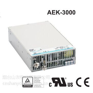 供应烟台AEK3000封闭型工业设备开关电源