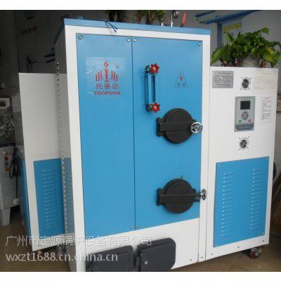 小型燃生物质免检锅炉,小型免检生物质蒸汽发生器