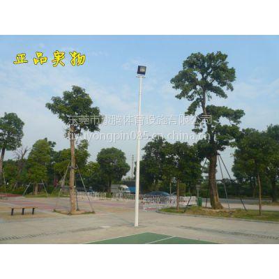 球场灯柱 篮球场灯杆 6米一拖一灯杆