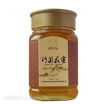 供应全国供应1斤2斤蜂蜜玻璃瓶
