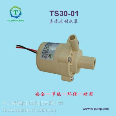 TS30-01TECSUNPUMP德胜牌食品级直流水泵DC12V扬程2M