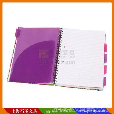 供应pvc文件夹定制 丕丕办公用品定做抽杆夹 塑料快劳夹文件夹