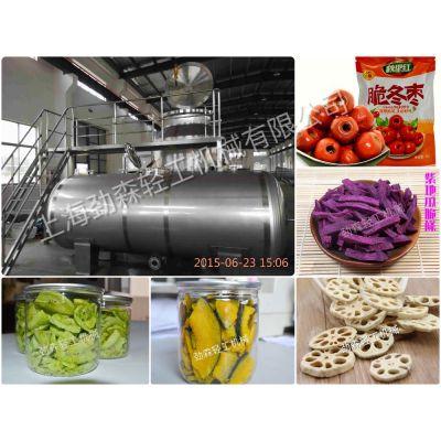 劲森-真空低温油浴脱水干燥机,国内最成熟的果蔬深加工设备