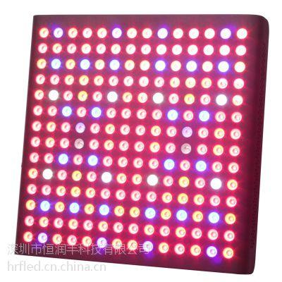 恒润丰 宝石系列大功率灯LED210w-600wLED植物生长灯,补光灯,大鹏灯,育苗灯,直接生产厂
