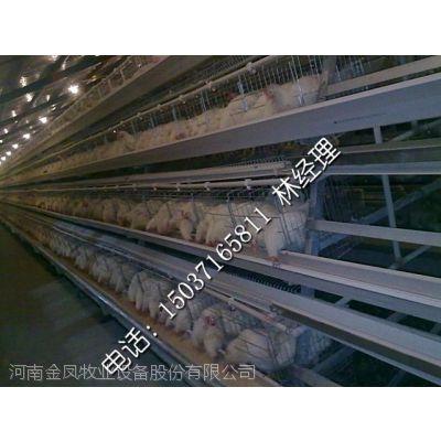 供应河南金凤8LPT-3190-30全自动化阶梯式蛋鸡笼