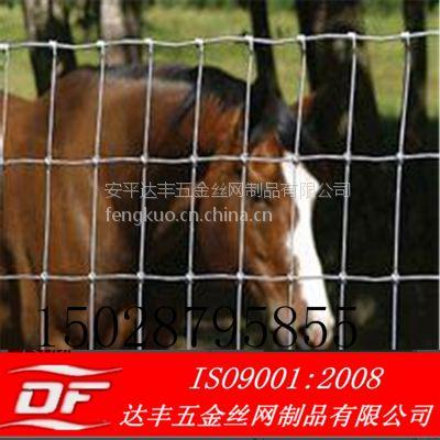 供应5*5围栏网养鸡厂网涂塑网草原网