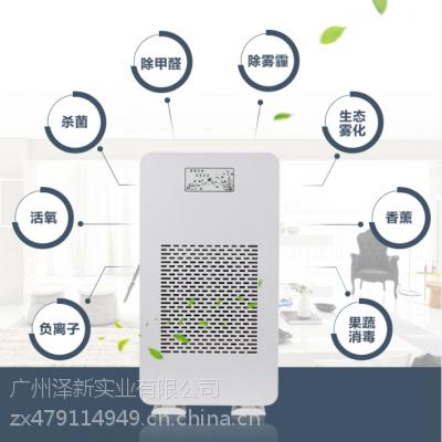 负离子生态仪 加湿负离子空气净化器 可定制oem 广州生产厂家