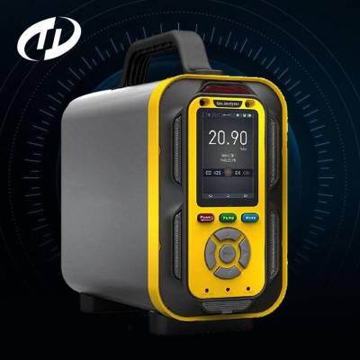手提式硫化氢分析仪TD6000-SH-H2S气体探测仪_H2S浓度探测仪