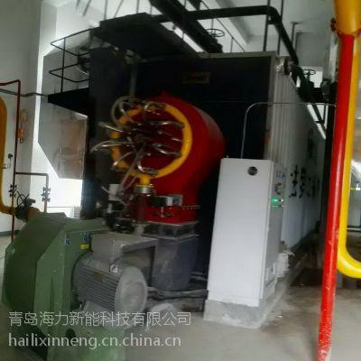青岛海力新能燃气低氮环保锅炉