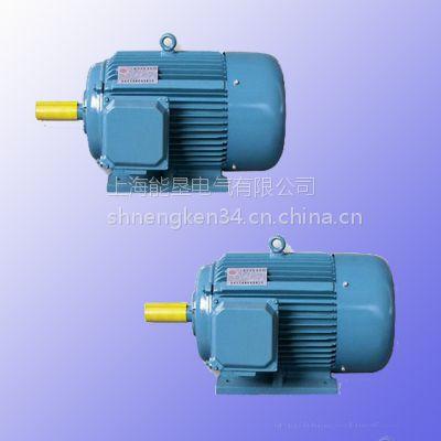 供应上海能垦Y200L2-6 22KW木工机械专用三相异步电动机