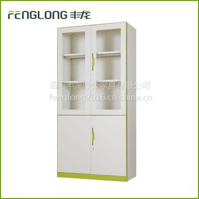 丰龙铁皮文件柜 大器械柜 钢制办公文件柜 储物柜 洛阳偃师