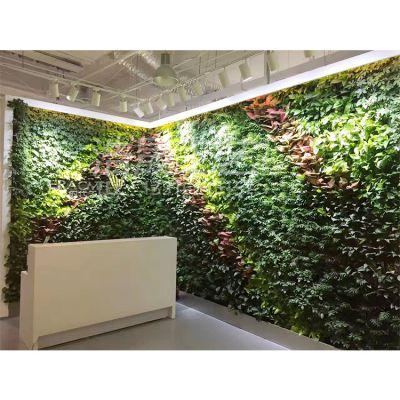 仿真植物墙 安装在室内对健康有没有影响呢?