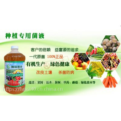 益富源em菌液用于蔬菜叶面肥什么价格安徽长春黑龙江