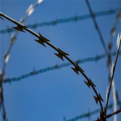 刀片刺网护栏网 刀片刺绳防护网 刺丝滚笼价格