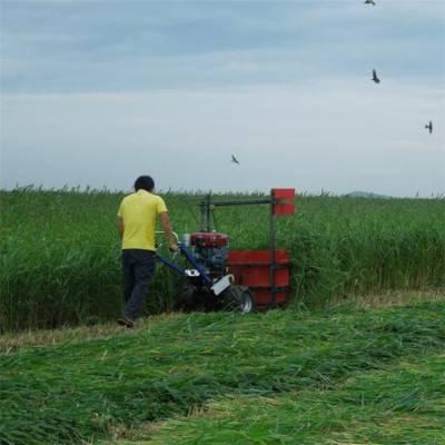 牧草小麦收割机 谷子辣椒割晒机