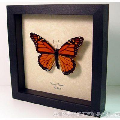厂家批发定制 蝴蝶标本相框 3cm厚有内空间空立体相框 实木画框
