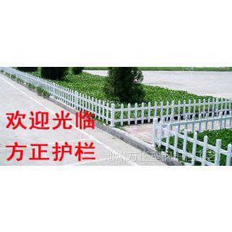 吉安PVC护栏 江西塑钢栏杆 抚州pvc栏杆 厂家直销