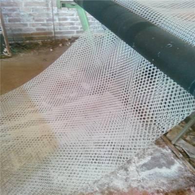 养殖用塑料平网 毕节塑料平网 雏鸡养殖网