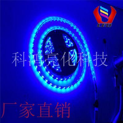 科鸿LED灯带低压12v24v防水超高亮5050贴片手机柜台软灯条光带照明