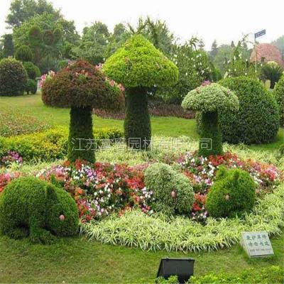 供应仿真五色草动植物绿雕 立体花坛 可定制几何形状的绿雕