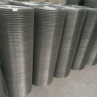 电焊网生产 电焊网栏 养殖防护网