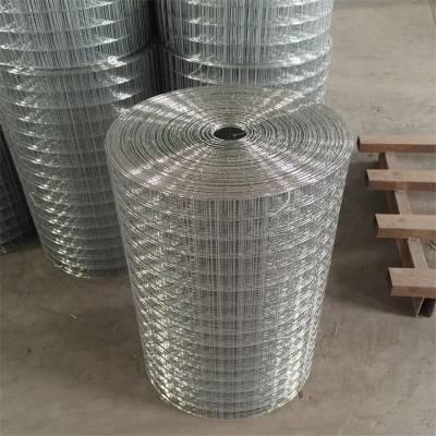 钢筋电焊网 样板焊接网 广西电焊网