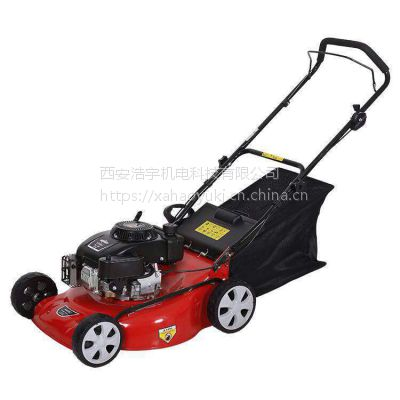 西安汽油草坪机、手推式汽油割草机、手推自走式草坪机