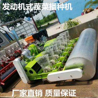 厂家直销12行香菜蔬菜播种机