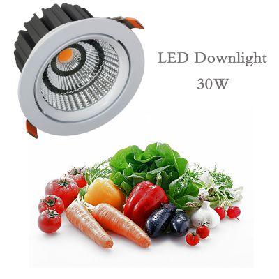 亿莱光电2018新款LED生鲜筒灯COB光源30W食品照明灯