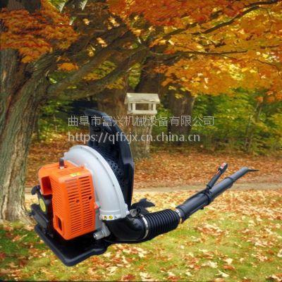 富兴马路落叶杂质清理机 背负式路面吹风机 冬季路面吹雪机型号