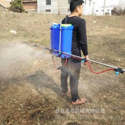 家用电动喷雾器 加长支架农药喷洒机 20L花生大豆打药机厂家
