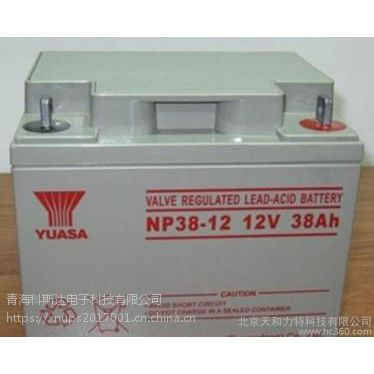青海汤浅蓄电池价格 机房UPS专用蓄电池 政府指定采购品牌