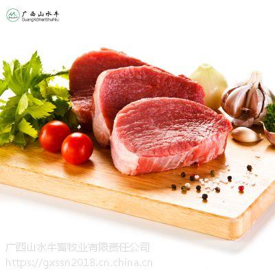 广西西门塔尔牛食堂餐饮商超供应销售特色礼盒牛肉