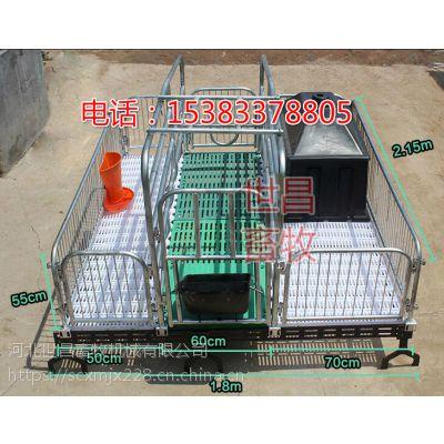 常规猪用产床设备直销厂家