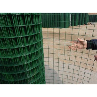 广东热镀锌荷兰网、东莞镀锌电焊网鑫桐轩筛网厂