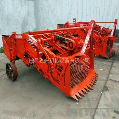 优质辣根起挖机 药材挖掘机生产厂家 丹参板蓝根收获机