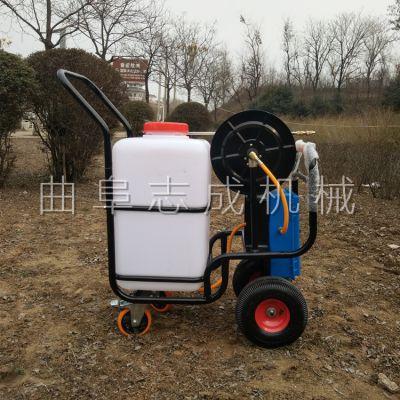 厂家直销手推式电动喷药机园林绿化高压远程喷雾器大棚蔬菜杀虫打药机
