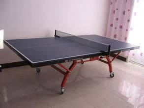 室内/室外乒乓球台价格 高密度纤维板 河北利伟体育
