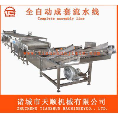 知名企业生产盐水杏鲍菇加工成套流水线@甜酸杏鲍菇机械设备