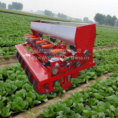 山东小颗粒种子精播机 启航牌苜蓿草种植精播机 多效小颗粒种子播种机