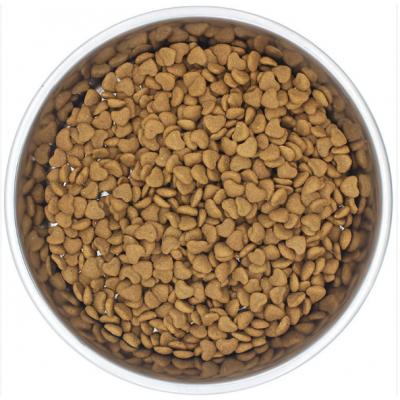 厂家推荐宠物食品加工机械设备 天津狗粮膨化机械 宠物饲料设备