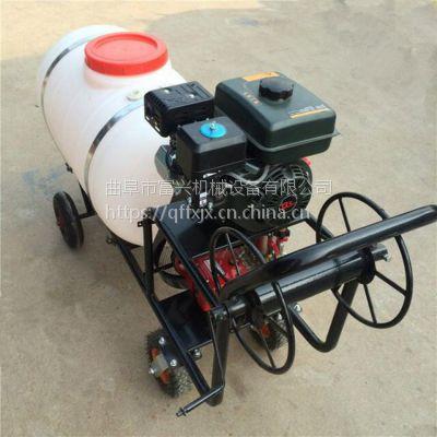 树行杀虫管理喷药机 带药桶喷雾器 灭菌喷雾打药机参数