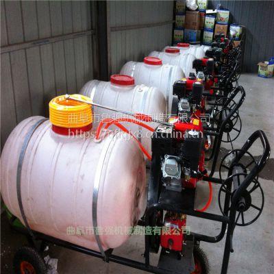 灵活手推打药机 加长喷杆喷雾器 菜园动力强劲喷雾器 鲁强机械