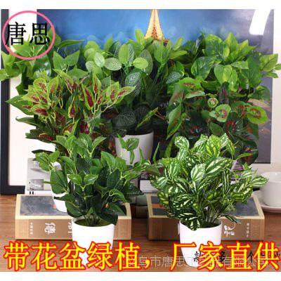 仿真植物仿真花 盆景塑料配材室内小绿植盆栽过胶绿萝假花装饰