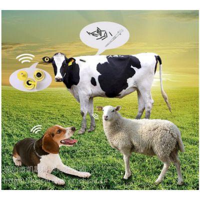 动物耳标 RFID农场畜牧业解决方案