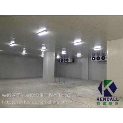 芜湖速冻冷库安装建造公司哪家好 芜湖冷库设计多少钱